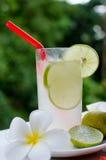 Lemon cocktail drink Stock Image