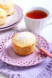 Lemon and coconut cakes Royalty Free Stock Image