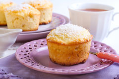 Lemon and coconut cakes Royalty Free Stock Photography