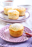 Lemon and coconut cakes Stock Image