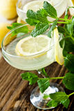 Lemon Coctails Royalty Free Stock Image