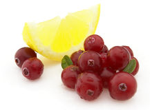 Lemon with cranberry Stock Photos