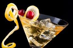 Lemon and cranberry splash coc Stock Images