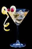 Lemon and cranberry splash cocktail Royalty Free Stock Photo