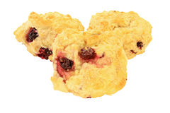 Lemon Cranberry Tea Biscuits Royalty Free Stock Photos