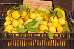 Lemon crate Royalty Free Stock Images