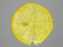 Lemon finely sliced Stock Images