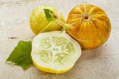 Lemon cucumbers Stock Images