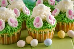 Bunny butt lemon cupcakes Easter treat Royalty Free Stock Photo