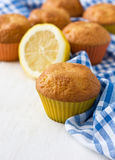 Lemon cupcakes Royalty Free Stock Photography