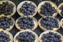 Lemon Custard Fruit Tarts with Blueberries Royalty Free Stock Photo