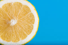 Lemon cut in half Stock Photography