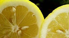 Lemon cut in half. Camera moves from left to right. stock video footage