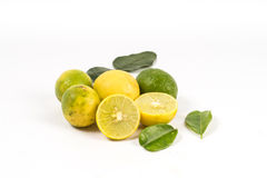 Lemon cut with leaves. On white background Royalty Free Stock Photography