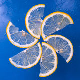 Lemon cut Stock Photography