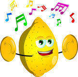 Lemon with cymbals Stock Image