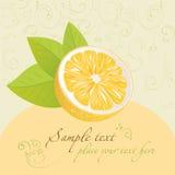 Lemon. Design template Stock Images