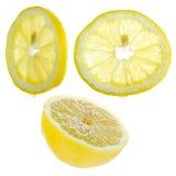 Lemon designer's set. Stock Photo