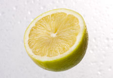 Lemon on dewy background Stock Photos