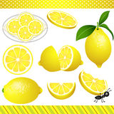 Lemon Digital Clipart Stock Photo