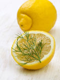 Lemon and dill Stock Photography