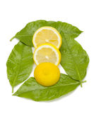 Lemon dish Royalty Free Stock Image