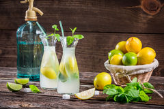 Lemon drink with mint leaf and citrus fruits Stock Image