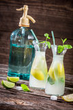 Lemon drink with mint leaf and citrus fruits Stock Photography