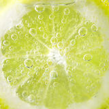 Lemon and drops Royalty Free Stock Photos