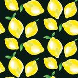 Lemon element. concept vivid back fashion backdrop Royalty Free Stock Photo