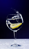 Lemon falling in a glass with splash on black Stock Images