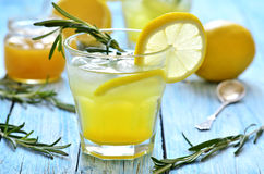 Lemon fizz. Stock Photography