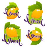 Lemon flavour, vector collection of glossy stickers, labels, emb. Lems Royalty Free Stock Image