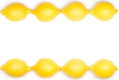Lemon frame Stock Images