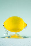Lemon 1 Royalty Free Stock Photos