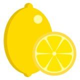 Lemon fresh juicy citrus fruit icon, vector illustration Stock Photos