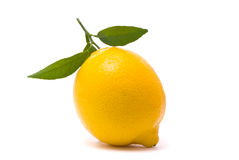 Lemon with fresh leaves Royalty Free Stock Photo