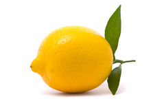 Lemon with fresh leaves Stock Image