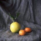 Lemon. Fresh tropical fruits full of vitamins and good mood Stock Photos