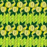 Lemon fresh wallpaper Royalty Free Stock Photos