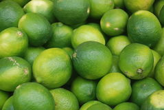 Lemon fruit. Tropical yellow green lemon fruit Stock Images