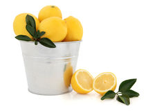 Lemon Fruit Royalty Free Stock Photo