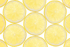Lemon fruit background Stock Image
