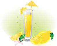 Lemon fruit and drink. Without transparency.  Vector illustration (EPS8). All parts (object) closed, possibility to edit.  Without a transparency Stock Photography