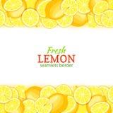 Lemon fruit horizontal seamless border. Vector illustration card top and bottom Fresh tropical yellow lime whole and Stock Images
