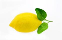 Lemon fruit with leaf isolated on white Stock Images