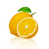 Lemon fruit with leaves isolated on white background. Clipping path Stock Photo