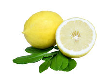 Lemon. Fruit with leaves on a white background. Royalty Free Stock Photography
