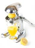 Lemon fruit natural juice utility Stock Photography