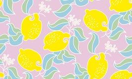 Lemon fruit pale tender pattern. Stock Images